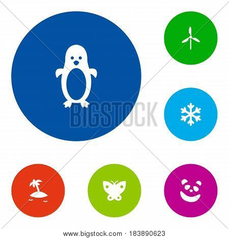 Set Of 6 Nature Icons Set.Collection Of Polar Bird, Wind Energy, Moth And Other Elements.
