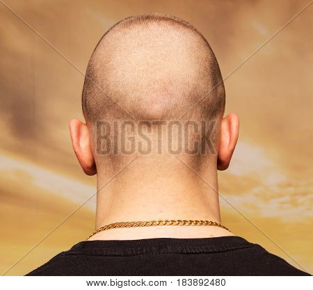 adult man bald head rear or back view