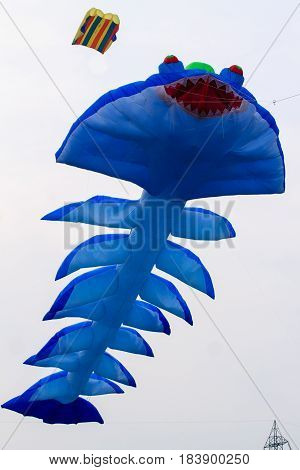 Blue Kite That Is Flying