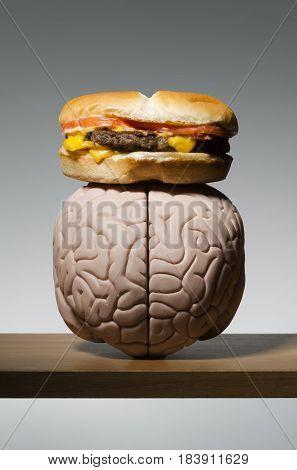 Greasy hamburger on a human brain model