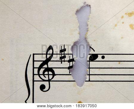 sheet music macro image