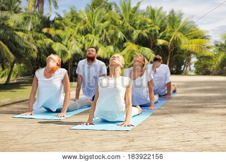 fitness, sport, yoga and healthy lifestyle concept - group of people making cobra pose over natural exotic background with palm trees