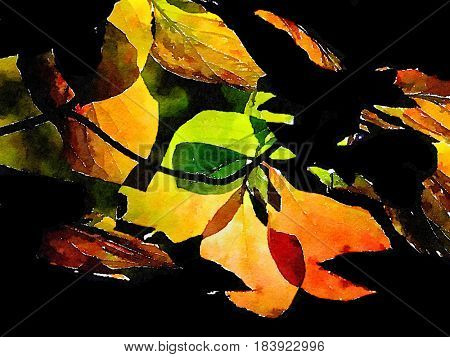 Very nice Abstract nature Image on paper