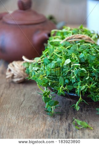 Close Up Of Fresh Thyme Bunch On A Wooden Table