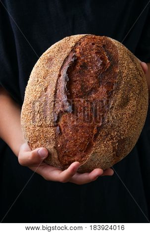 Round Freshly Baked Sourdough Rye Bread At Boy's Hands