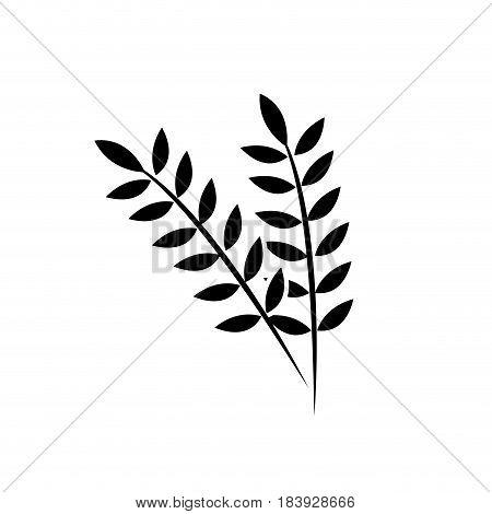 contour healthy wheats organ plant nutricious, vector illustration