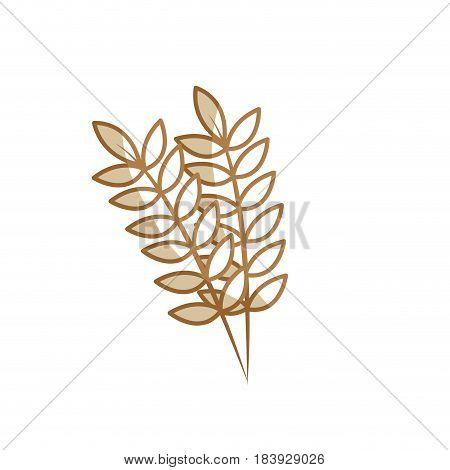 silhouette healthy wheats organ plant nutricious, vector illustration