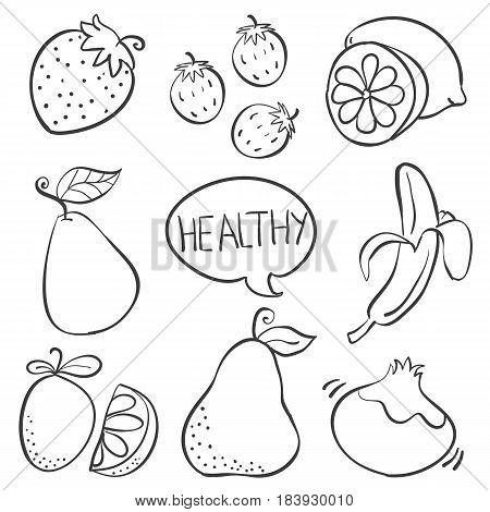 Fruit hand draw various doodle collection stock