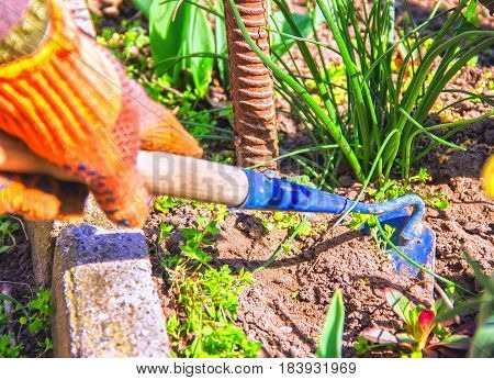 View Of A Woman's Hand Hoeing Weeds In The Garden On A Hot Summer Day, Weeding Grass, Garden And Cle