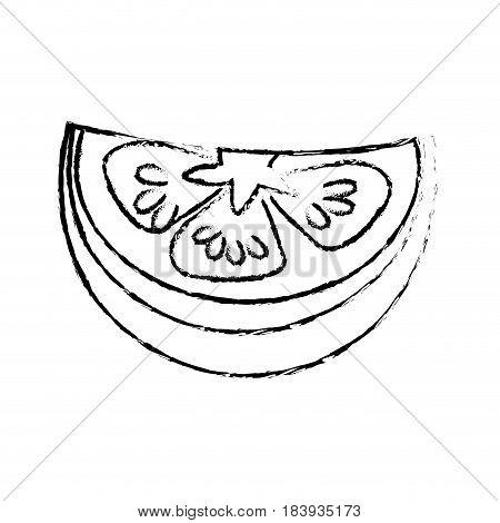 edge fresh piece of limon organ vegetable, vector illustration