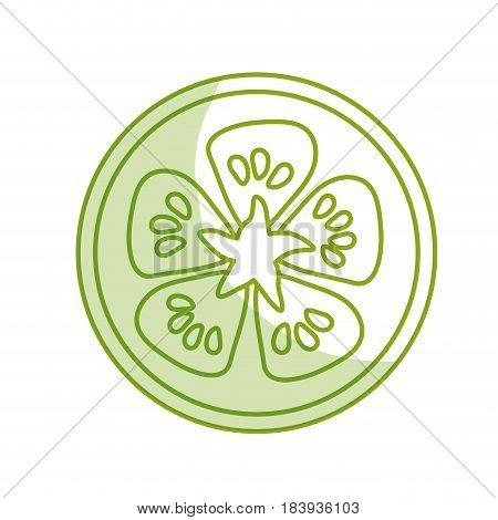 silhouette fresh slice limon organ vegetable, vector illustration