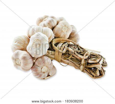 Bundle of dry garlic isolated on white background.