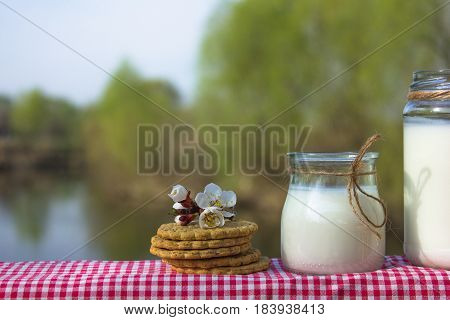 Delicious nutritious and healthy fresh plain yogurt on the river