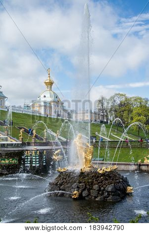 PETERHOF RUSSIA - MAY 10 2015: Iconic view of Peterhof Palace at St. Petersburg Russia.