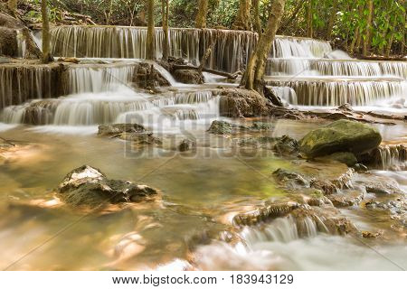 Nation park deep forest waterfall natural landscape background