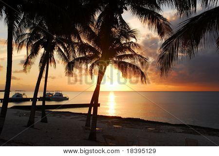 Sunset at Maria la Gorda beach in Cuba with palmtree silhouettes