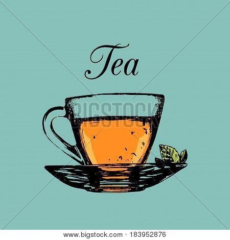 Glass cup of tea isolated. Vector transparent mug and saucer color illustration. Hand drawn sketch of soft drink for restaurant, bar, cafe menu design, logo etc.