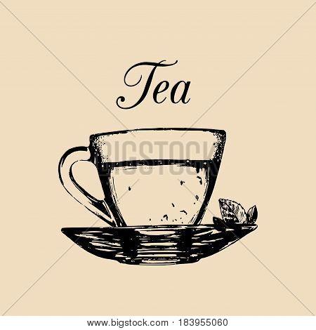 Glass cup of tea isolated. Vector transparent mug and saucer illustration. Hand drawn sketch of soft drink for restaurant, bar, cafe menu design, logo etc.
