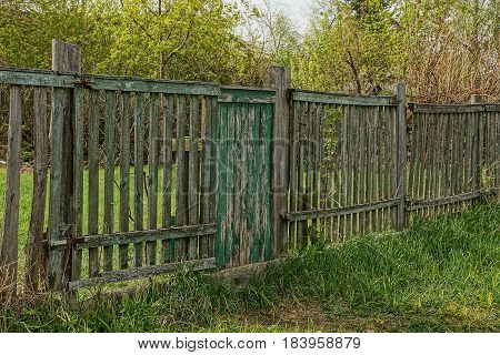 Old gray fence with green wicket in the grass