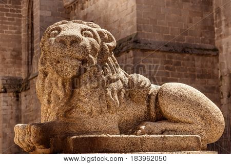 A sculpture of a lion in front of the cathedral in Avila, Spain, toned image, selective focus