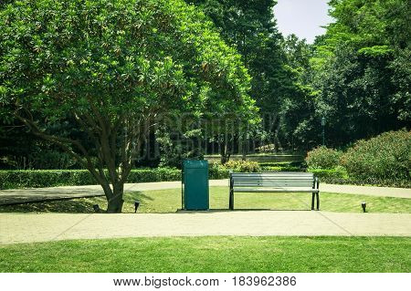 Green Tree, Plants And Wooden Bench In Public Park