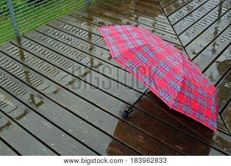 rain: red checkered open umbrella laying on wet wood planks
