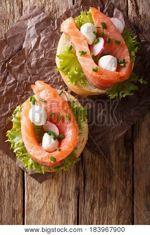 Sandwiches With Salted Salmon, Mozzarella, Frisee, Onion And Radish Close-up. Vertical Top View