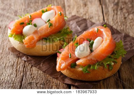 Hearty Sandwiches With Salmon, Mozzarella, Lettuce, Onion And Radish Close-up. Horizontal