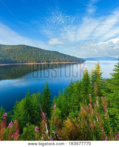 Alpine Lake Vidra Summer  View