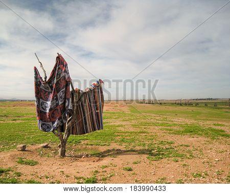 Carpet Rugs Drying In A Field In Marrakech