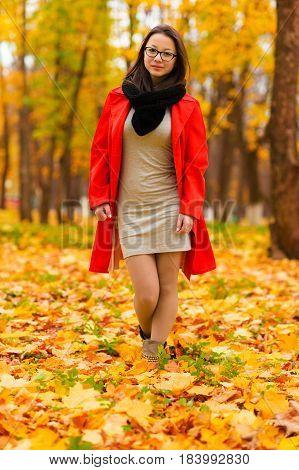 beautiful slender Korean girl in autumn forest