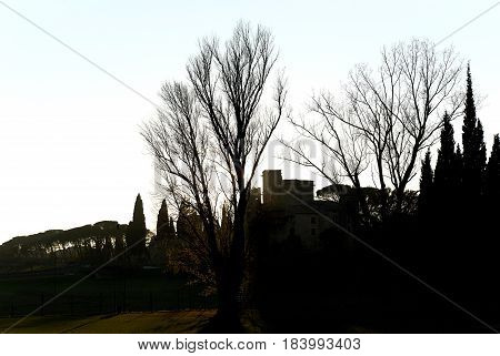 Silhouette of a trees and Renaissance castle of Lourmarin village. Provence-Alpes-Cote d'Azur. France