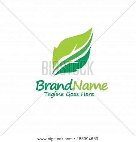 green leaf ecology nature element vector. logo and abstract organic leaf logo. Leaf logo ecology graphic creative template. Environment decoration modern leaf emblem