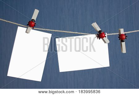 Two white isolated photo fixed clothespins with ladybirds on a rope