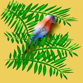 colorful parrot sitting in green palm fronds illustration poster