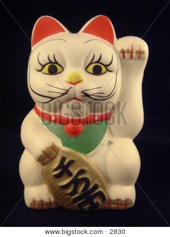Toy Kitty