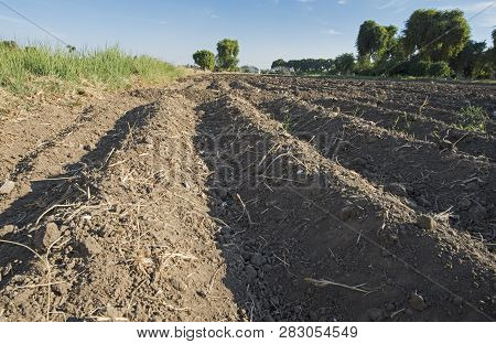 Closeup detail of soil in ploughed furrows of arable farmland field poster