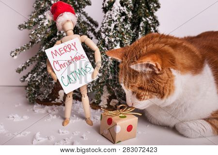 Kitty cat sniffing christmas gift wooden jointed manikin doll wearing red santa claus hat holding sign Merry CATMAS winter scene fake snow poster