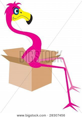 Cartoon Flamingo sitting in a moving box poster