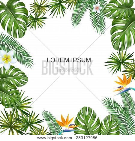 Realistic Tropical Flowers Concept With Palm Monstera Leaves Plumeria And Bird Of Paradise Flowers V