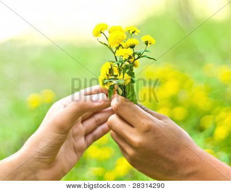 Flowers In The Man Hand