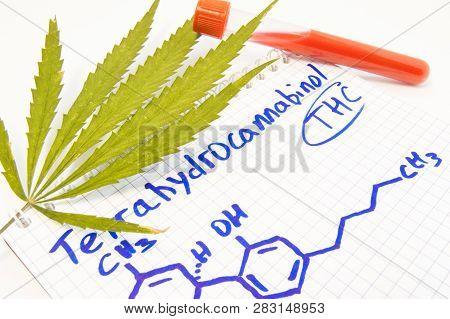 Test Or Analysis For The Presence Of Tetrahydrocannabinol (thc) In Blood. Leaf Of Hemp, Test Tube La