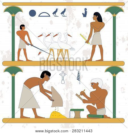 Ancient Egypt Background. Peasant With Grane And Scribe Compostion. Peasant Working At Ciconia Farmi