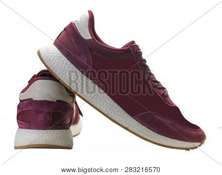 Sneakers Isolated On White Background. Sport Shoes.