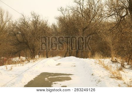 A Walking Path In A City Park Covered (blocked) With Snow.