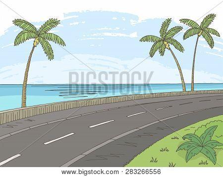 Street Road Graphic Palm Tree Color Sea Landscape Sketch Illustration Vector