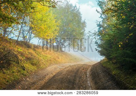 Road Uphill Through Forest In Autumn Fog. Colorful Trees On The Side Way. Dramatic Nature Scenery