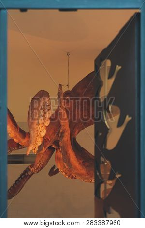 Lisbon, Portugal - 01/03/19: Giant Octopus In The Ceiling Of A Shop In Downtown Chiado, Close To Pri