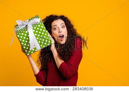 Close Up Photo Beautiful Cheerful Amazing Her She Lady Hold Large Package Amazed Wonder Maybe Cat Do