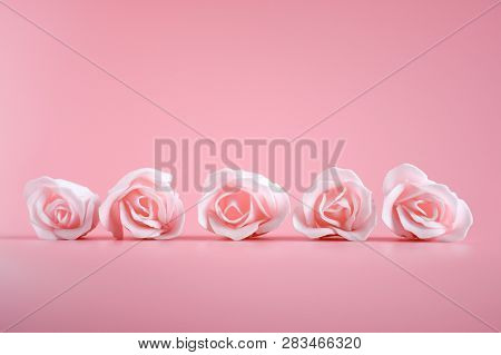 Close Up Beautiful Sweet Soft Pink Rose Flowerwith Pink Background, Idea Background For Valentine's
